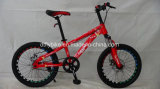 20inch Steel Frame MTB Bike, Sigle Speed Bike,