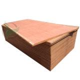 Apitong Phenolic Boards Marine Plywood 28mm Wooden Floor Plywood Sheet