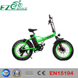 Children Electric Bike Simple Used Ebike