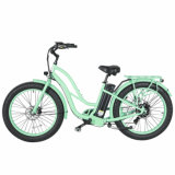 China Factory Price Best-Selling Cheap Muse 500W Electric Bike
