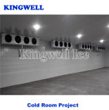 Cold Room Freezer for Fish Meat Vegetables with Good Price