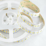 SMD2835 DC24V Dual White Waterproof CCT Adjustable LED Strips