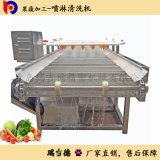 High Pressure Spray Cleaning Machine for Fruits and Vegetables