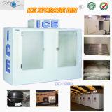 Indoor/Outdoor Bagged Ice Storage Bin/Ice Merchandiser/Ice Shop Equipment (CE Certificate)