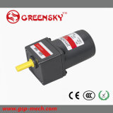Small Micro Mini AC Induction Geared Motor