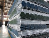 Tianjin Youfa Factory Galvanized Tube Galvanized Pipe