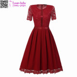 Sexy Vintage Summer Lace Round Neck Short Sleeve Princess Women Dress