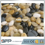 Landscaping River Stone Pebbles with White Black Beige