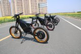 Electric Motocross High Speed Leili Electric Bicycle Ebike