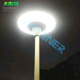 30W/20W Garden Street LED Light with Motion Sensor for Solar