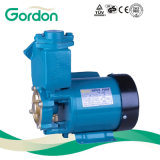 Domestic Electric Copper Wire Self-Priming Booster Pump with Pump Impeller
