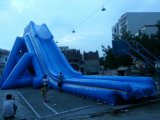 2017 Popular Giant Inflatable Slide