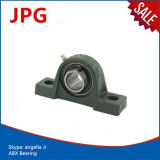 Hot Pillow Block Bearing Ucp201 Ucp201-8