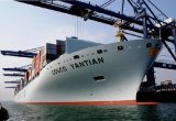 Ocean Shipment & Pallet/Carton Service in Shenzhen China