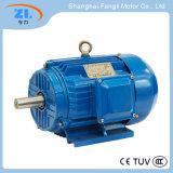 Yd80m1-4/2 Change-Pole Multi-Speed Three Phase Induction Motor