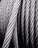 High Strength Wire Rope with Low Price