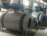 Ball Valve Trunnion Mounted Ball