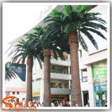 Guangzhou Wholesale Square Decoration Artificial Date Palm Tree