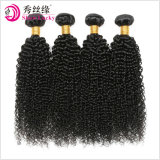 Unprocessed Virgin Human Hair Extension Mongolian Afro Kinky Curly Hair Full Cuticle Natural Black Remy Human Hair Weaving