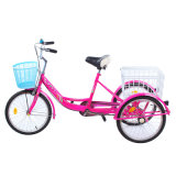3 Wheel Adult Tricycle Wholesale/20 Inch Cargo Tricycle