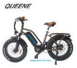 Queene/Patent Fat Tire Cheap Electric Bike with 500W 1000W MID Motor for Sale