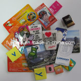 Custom Plastic/Polyresin/Soft Rubber/PVC Fridge Magnet as Souvenir