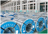 Good Price Carbon Structural Steel Own Manufacturer Steel Coil & Sheet