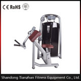 Fitness Equipment Biceps Machine