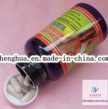 OEM Slimming Capsule Dietary Supplements Pure Garcinia Cambogia 1300