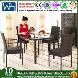 Garden Patio Wicker / Rattan Furniture Dining Set (TG-608)