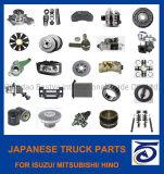 Truck Spare Parts for Volvo/Mercedes-Benz/Man/Scania/Renault/Daf/Iveco/ Isuzu/ Mitsubishi/ Hino/Hyundai/Toyota, Nissan/BMW, Audi, Benz/VW