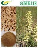 Astragaloside IV 10%15%/Astragalus Polysaccharide 90% Powder in Bulk OEM Service