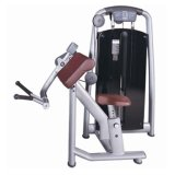 Cheap Commercial Gym Fitness Equipment Biceps Machine Sports Equipment