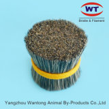 Top Quality Chungking Natural Hog Bristles