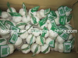 2015 New Crop Small Mesh Bag Packing Garlic