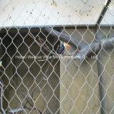Stainless Steel Wire Rope Animal Enclosure Mesh Bird Netting Ferrule Type