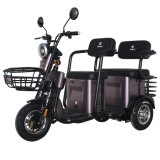 Factory Wholesale 48V500W Long Distance Passenger Electric Tricycle
