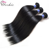 Grade 10A Low Price Remy Malaysian Hair Vendors Wholesale 100 Virgin Human Hair Extensions