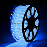 Bright Blue LED Flex Rope Light with High Quality