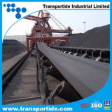 China Produce Transport Conveyor Belts (EP80~EP630)