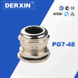 Pg7-Pg48 Waterproof Long Thread Explosion-Proof Metal Cable Gland