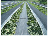 Black PP Woven Weed Control Landscaping Fabric