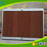 Agricultural Evaporative Greenhouse Cooling Pad