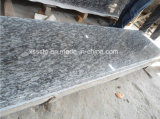 Sea Wave Granite Slabs for Flooring/Wall Cladding/Countertops/Window Sills/Stairs