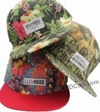 2016 New Style Hiphot Snapback Cap with Embroidery and Printing