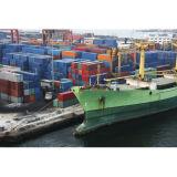 Shipping Container to United Kingdom Ex Shanghai/Shenzhen/Guangzhou/Xiamen/Ningbo/Dalian/Qingdao/Tianjin Port