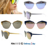 Cat Eye Sunglasses Women Wholesale Sunglasses with Ce and FDA