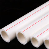 Pn10 Pn16 Cool and Hot Water PPR Pipe with Different Sizes