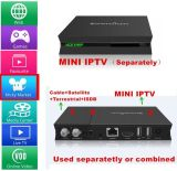 Manufacturer Hybrid DVB-S2+T2/ISDB+IPTV Set-Top-Box with Micky Market (I9)