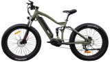 2018 Fat Tire Full Suspension Bafang MID-Drive Motor Electric Bike Bicycle Ebike